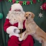 Santa and HAAL Reunion Day, Dec. 11
