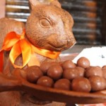 Aw, Nuts! Bloomfield's The Orange Squirrel To Close