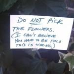 Montclair Plant Scolds Stupid People