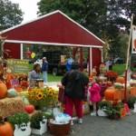 Bloomfield Harvest Fest 2012
