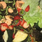 Learn How to Compost at the Compost Give-Back
