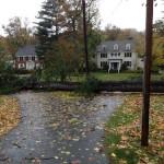 Hurricane Sandy: Damage Begins Montclair, Glen Ridge UPDATE