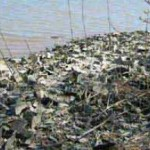 Superstorms and Toxic Waste