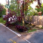 Transformer Down Near Brookdale Park Last Night (Updated)