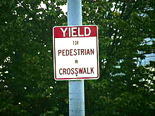 yield for pedestrians in crosswalk