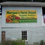 Organic Farmstand in Cedar Grove Benefits Historical Society, Morgan's Farm House & Museum
