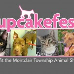 Annual Cupcakefest to Benefit Montclair Township Animal Shelter on Saturday