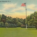 A Bit of Local History on Flag Day