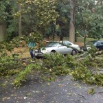 Winds, Rain, Downed Branches: What Storm Damage Are You Seeing?