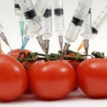 Learn About GMOs at the Montclair Public Library