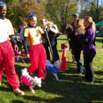 Dogs Don Costumes For Brookdale Park's Strut Your Mutt