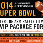 The Super Bowl Experience: A Chance of a Lifetime
