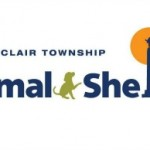 Animals Not Getting Enough Exercise Among Issues Raised By Montclair Animal Shelter Advisory Board