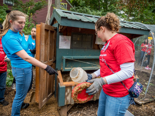 MSU Students Roll Up Sleeves To Honor Day of Service and Remembrance