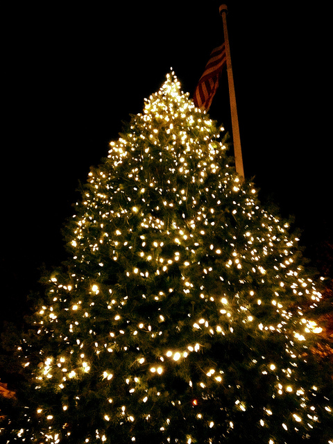 Montclair Tree Lighting 2013. Photo: Chanda Hall