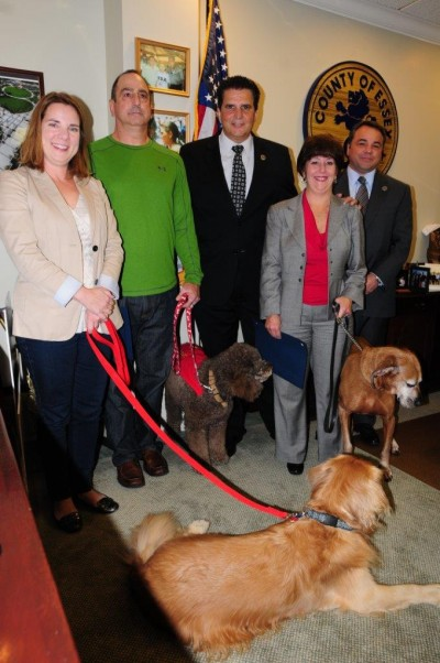 Animal Assisted Therapy Program