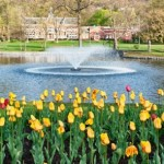 The Weekend: It's May in Montclair and More!