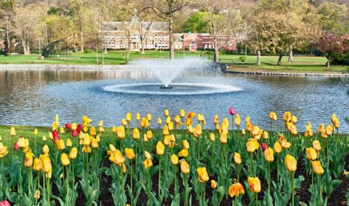 The Weekend: It\'s May in Montclair and More! - Baristanet