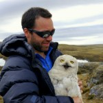Snowy Owls: The Ultimate Nomads at the Montclair Bird Club