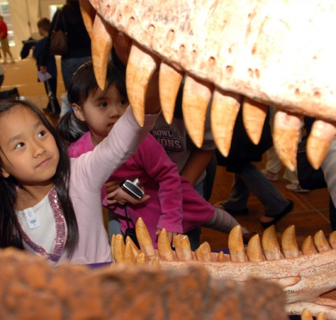 Girl_With_Dino_618x588
