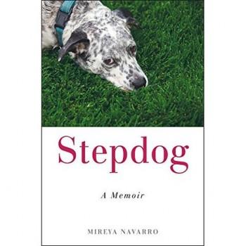 StepdogCOVER2