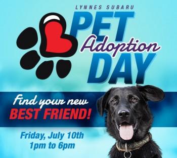 North Jersey Humane Society Adoption