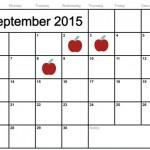 2015-2016 Local Public School Calendars