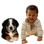 March of Dimes Hosts First Annual Dog Walk at Brookdale Park in Bloomfield