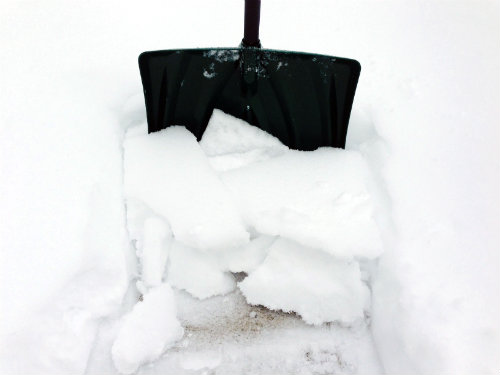 Montclair Snow Buddies to Expand Operations