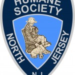 Bloomfield Seeks Temporary Animal Shelter Management in Wake of North Jersey Humane Society Investigation