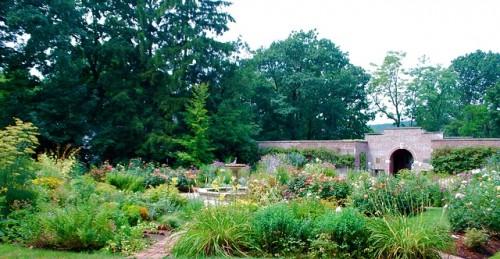 avis gardens