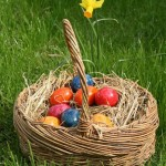 Meet the Easter Bunny, Egg Hunts and Spring Fun!