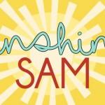 Sunshine Sam Toy Store to Sponsor Super Artist Fundraiser to Benefit the Lulu & Leo Fund