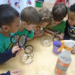 """Students Learn How to """"Reduce, Reuse, Recycle, Rethink!"""" And Celebrate Earth Day at Montclair's Park Street Academy"""