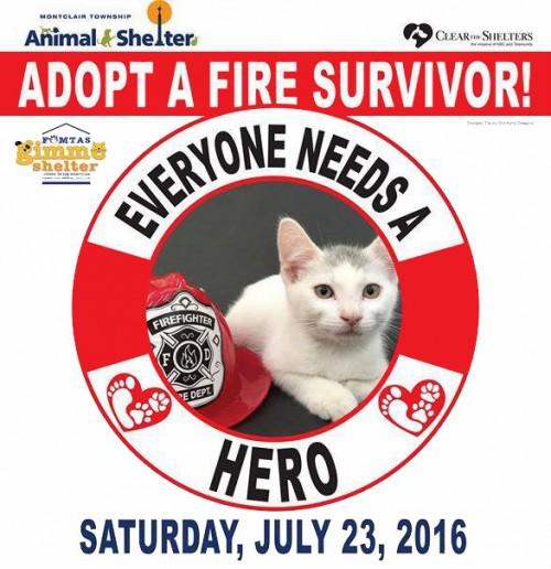 fire-survivor