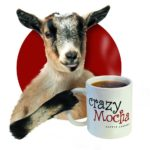 Crazy Mocha Coffee Coming to Montclair