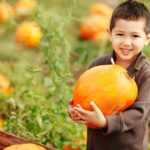 Halloween Happenings For Kids and Families