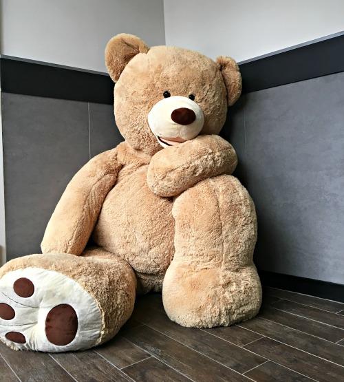 montclair-bid-bear
