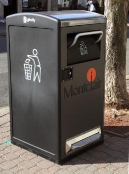 Bigbelly Waste Management