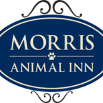 Sponsored: Sweet Dreams for You and Your Pet at Morris Animal Inn