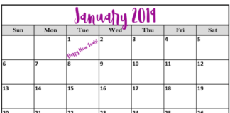 What to Do in January 2019