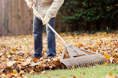 gardening-winter-450x298