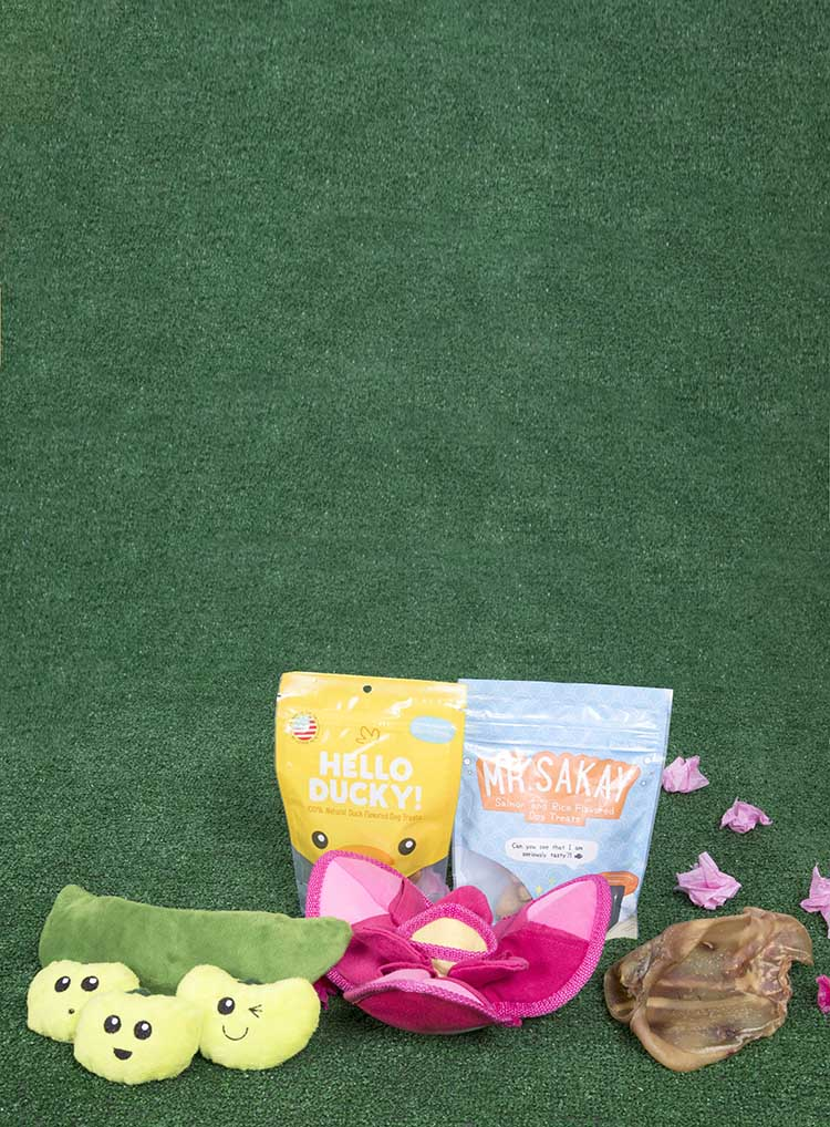 Photograph of Bento & Blossoms themed BarkBox toys and treats