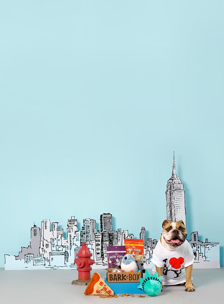 Photograph of New York City themed BarkBox toys and treats