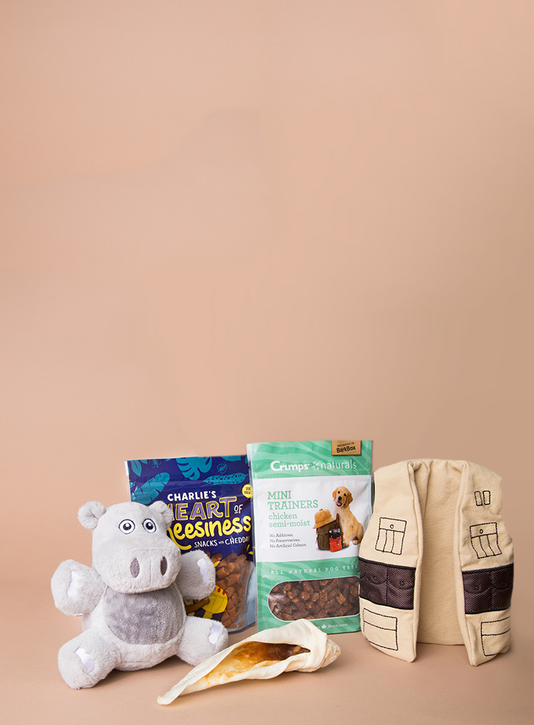 Photograph of Sniffin' Safari themed BarkBox toys and treats