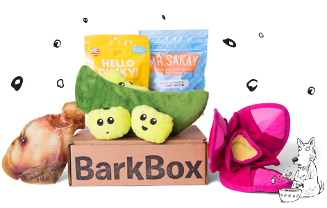 Bento & Blossoms themed BarkBox