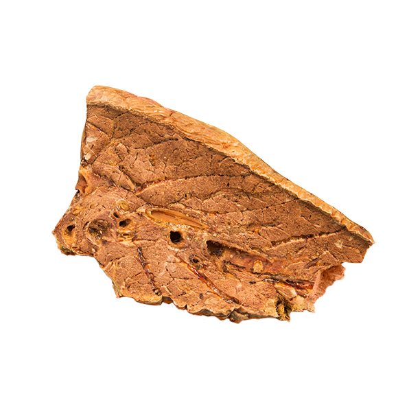 Photograph of BarkBox's Frank's Flank Steak product