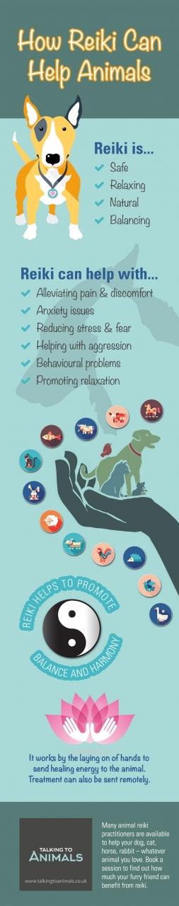 reiki-for-animals-infographic.jpg