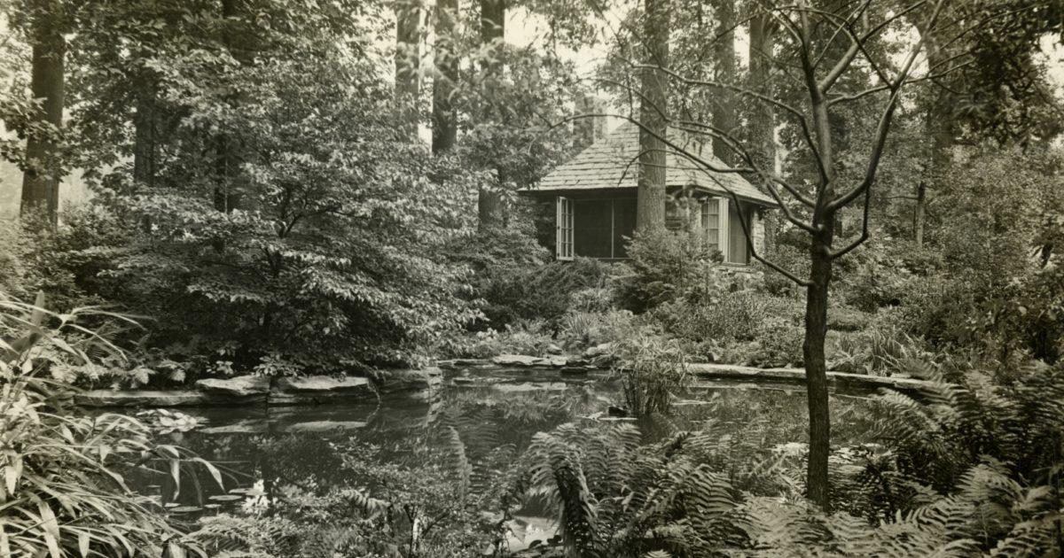 Barnes Foundation | The Arboretum School of the Barnes ...