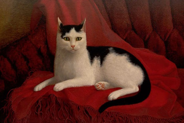 female cat lover Clara Barton's feline Tommy